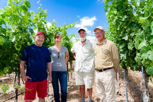 Our team in the vineyard